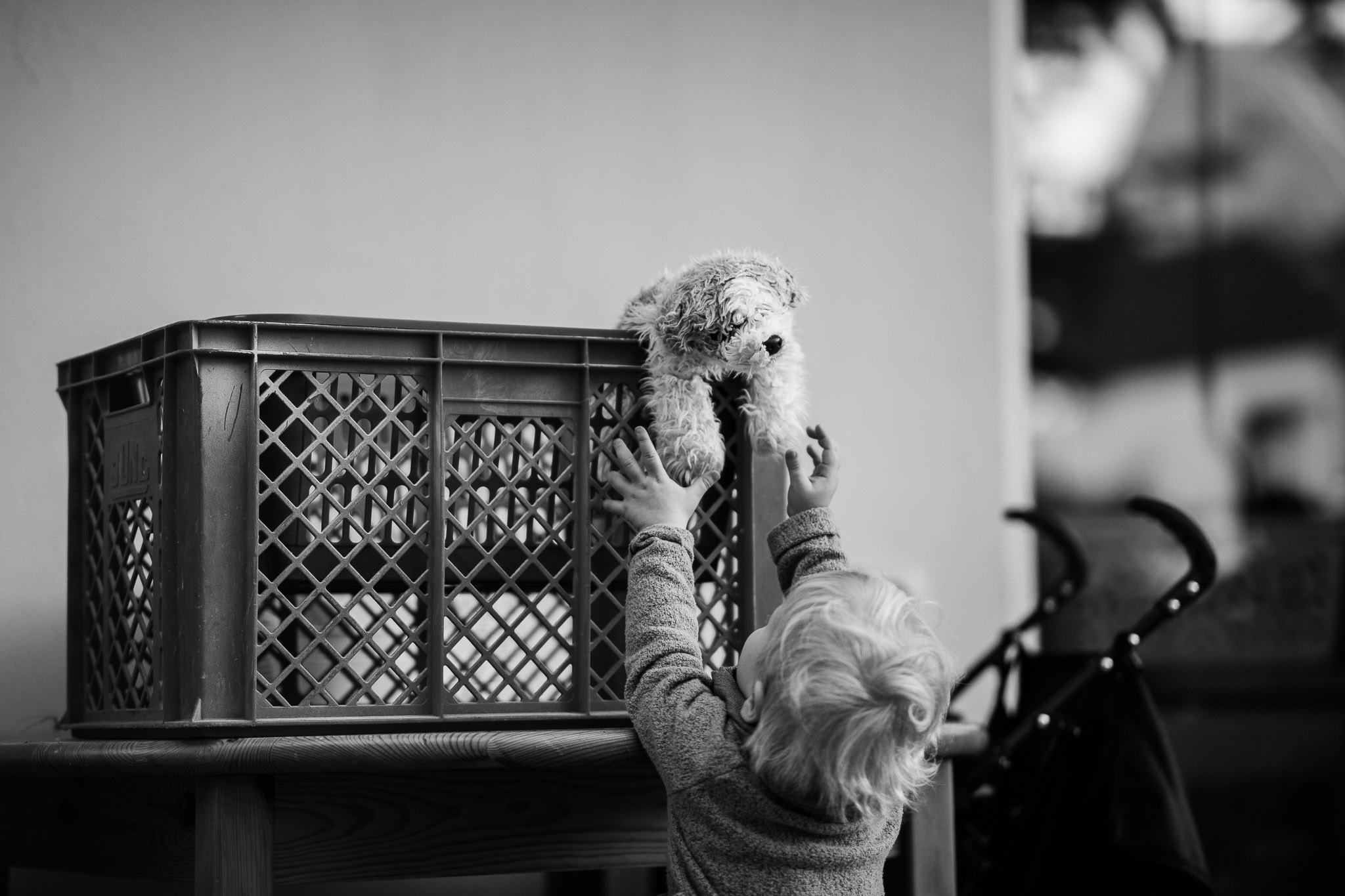 Familienfotos Oppenheim: Homestory 35