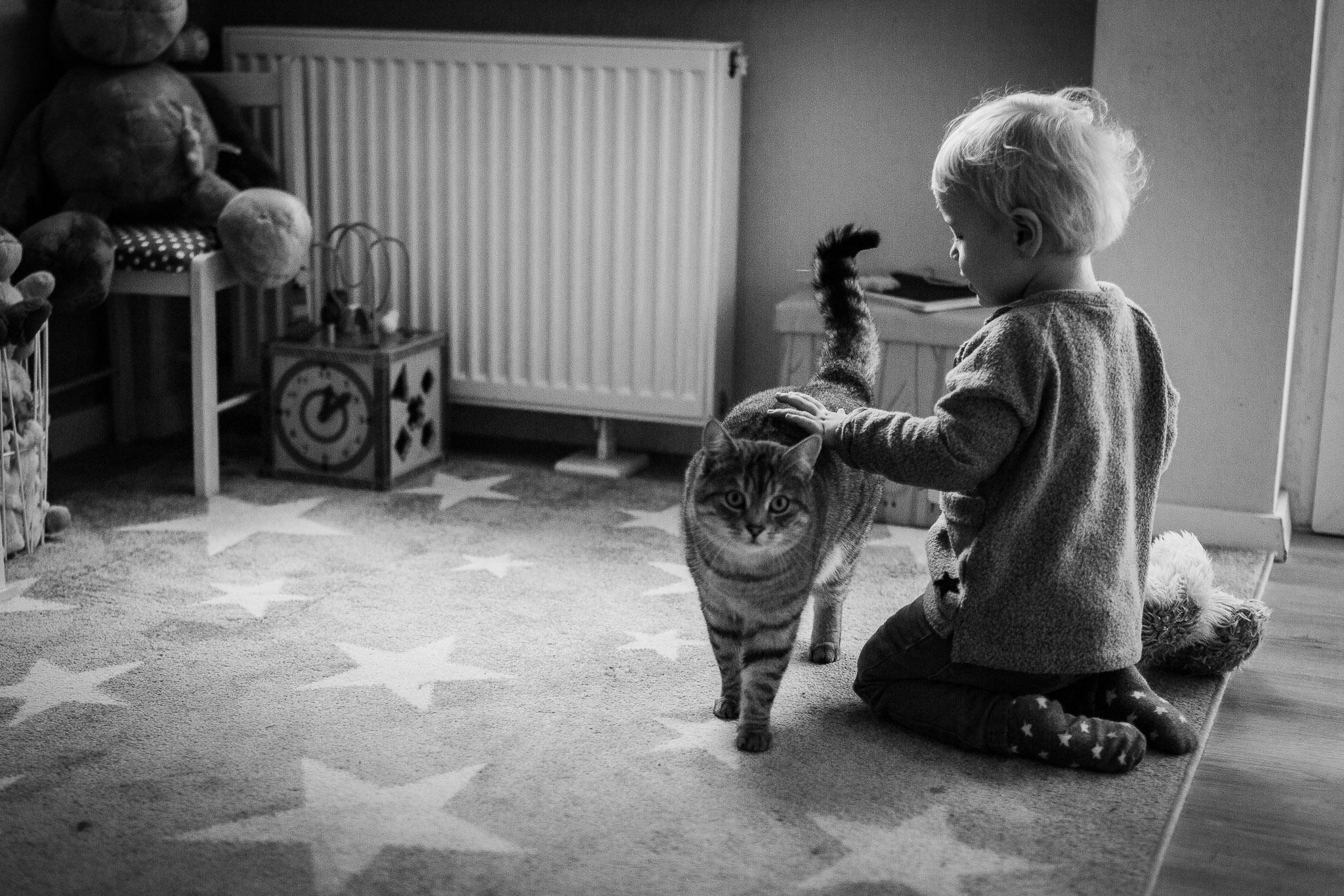 Kleinkind und Katze